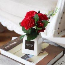 비누꽃 카네이션 고마운 사랑 -레드
