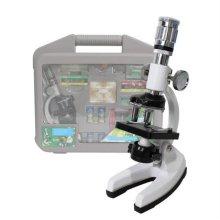 AZ 전자현미경