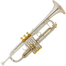 YAN YT-3335S Trumpet / 얀 트럼펫