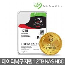 12TB IronWolf Pro ST12000NE0007 데이터복구 NAS HDD