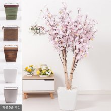 쌍대벚꽃나무화분set 170cm K [조화] 핑크-사방형:빈티지마야우드화분(28cm) 5-5