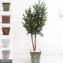 올리브나무화분set 200cm K_M [조화] 사방형:빈티지마야우드화분(28cm) 5-5