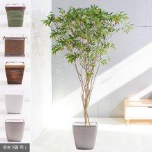 라인-올리브나무화분set 240cm (조화) FREOFT 벽면형:빈티지마야우드화분(28cm) 5-5