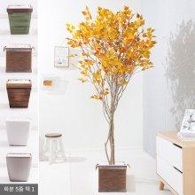 라인-단풍자작나무화분set 210cm (조화) FREOFT 벽면형:빈티지마야우드화분(28cm) 5-5