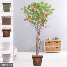 라인-사과나무화분set 240cm (조화) FREOFT 벽면형:빈티지마야우드화분(28cm) 5-5