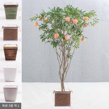 라인-복숭아나무화분set 210cm (조화) FREOFT 벽면형:빈티지마야우드화분(28cm) 5-5