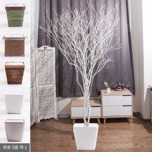 라인-화이트소원나무화분set 210cm (조화) FREOFT 벽면형:빈티지마야우드화분(28cm) 5-5