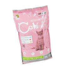 어린 고양이용 8kg 1p _062DB7