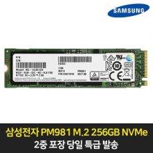 PM981 NVMe m.2 SSD 256GB PC/노트북