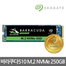 바라쿠다 510 M.2 NVMe 250GB