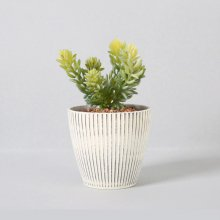 조화 다육식물 다육이 미니화분 그린펫 18cm