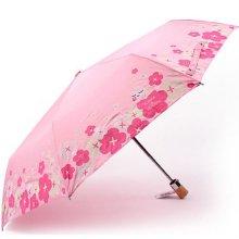 카카오프렌즈 블로썸 완전 자동우산 어피치 학생우산