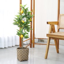 조화 조화나무 레몬나무 화분세트 고퀄리티 인조나무