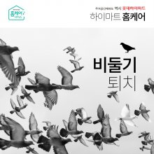 비둘기퇴치시공 - 청소+퇴치시공, 1개소