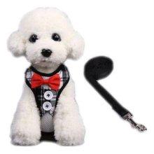 하네스세트 L(체크) 강아지옷 애견옷 애견줄 W1B626B