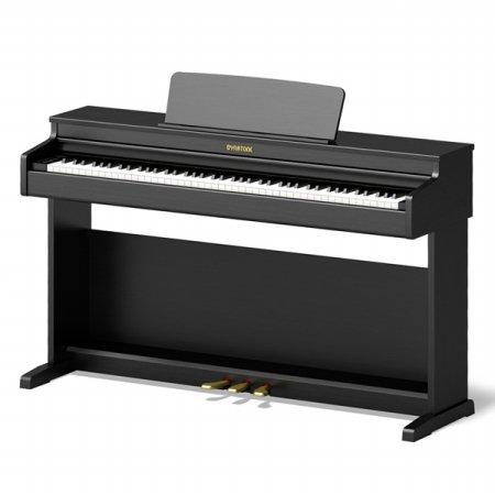 다이나톤 프리미엄 전자 디지털피아노 DT100 블랙